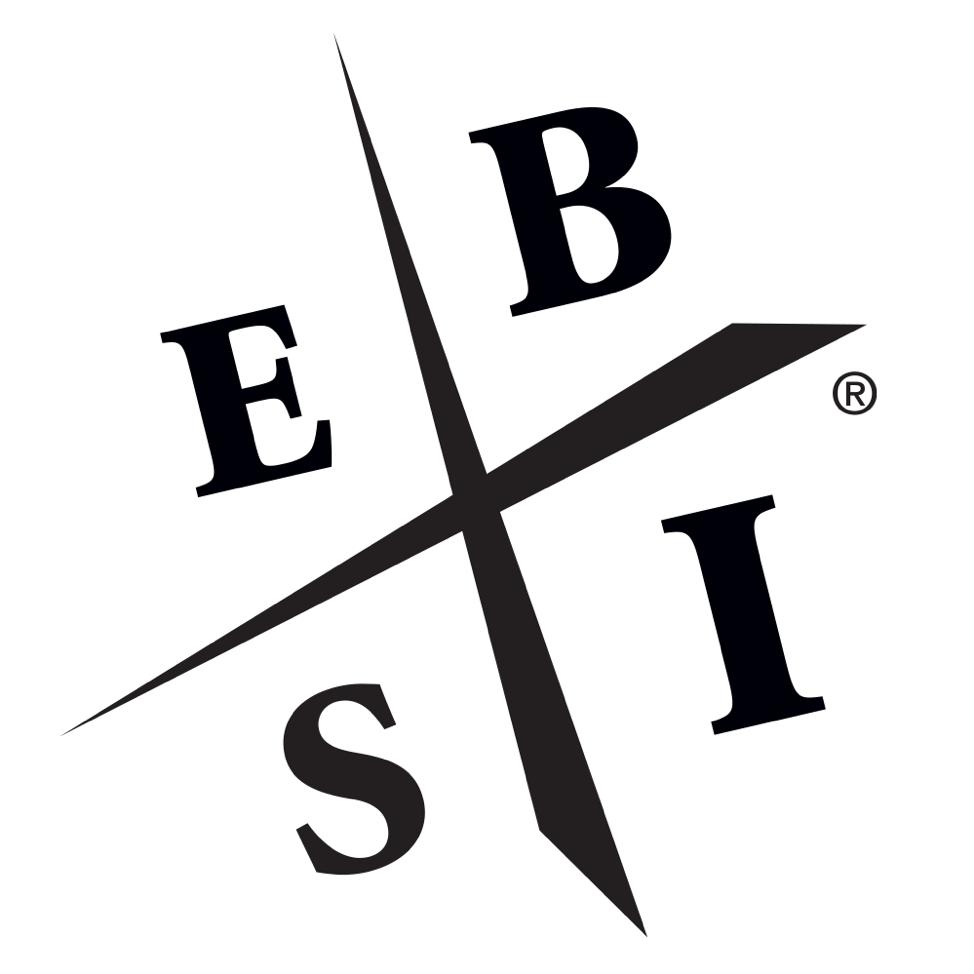 Old ESBI Diagram