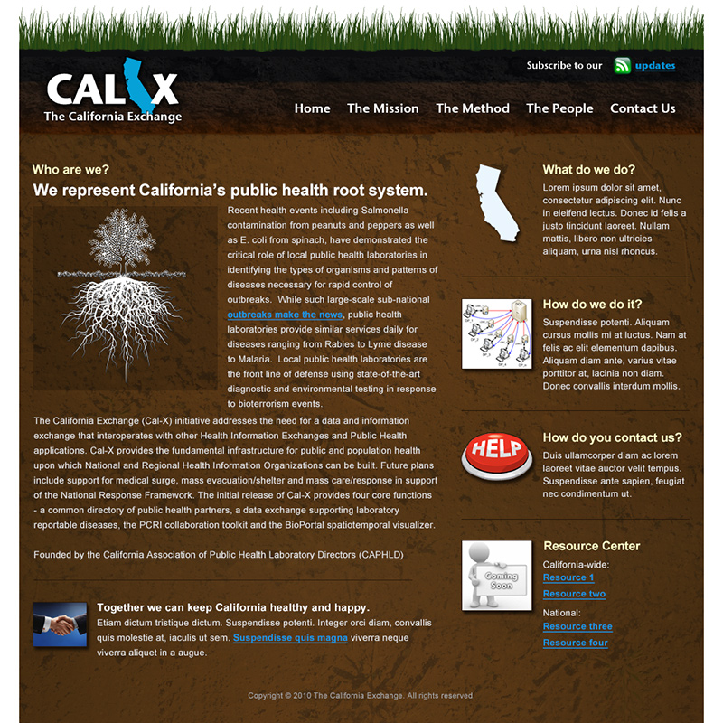 The California Exchange (Cal-X) informational site design